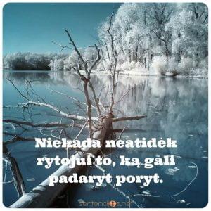 gamta ziema