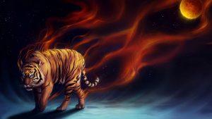 ipykes-tigras
