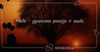 Meilė - gyvenimo poezija