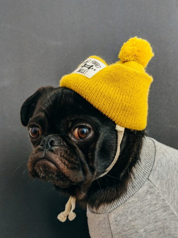 Puiki skrybėlė