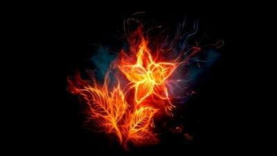 Jausmas – ugnis