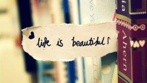 gyvenimas-yra-grazu