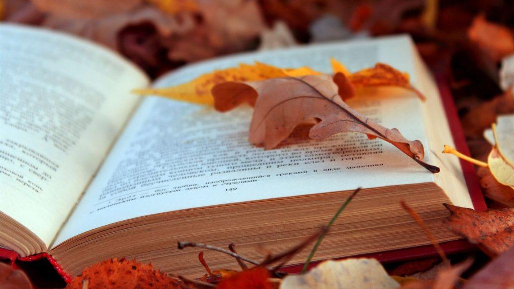 knyga-rudens-lapuose