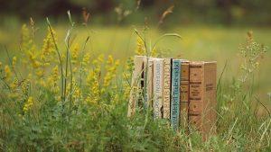 knygos-zolyne