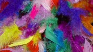 spalvotos-plunksnos