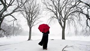 vienisas-siluetas-ziemoje