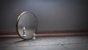 veidrodelis
