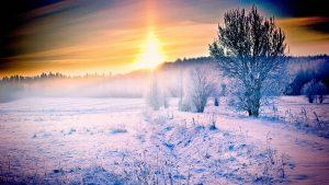 saulelydis ziema